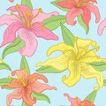Vector floral seamless background. Stock Photos