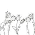 Vector Floral Seamless Horizon...