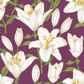 Vector floral seamless pattern with white lilies. Royalty Free Stock Photo