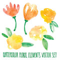 Vector floral set. Colorful floral collection with leaves and flowers, drawing watercolor. Spring or summer design for invitation,