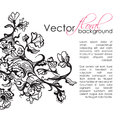 Vector floral sketch hand drawn background vintage abstract black and white illustration Stock Photos