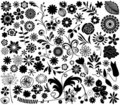 Vector flower elements Royalty Free Stock Photography