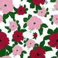 Vector flower pink hibiscus seamless pattern Royalty Free Stock Photo