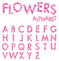 Vector Flowers Alphabet Royalty Free Stock Photo