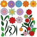 Vector flowers set
