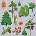 Vector forest collection Stock Images