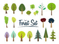 Vector forest set. Different trees and bushes.