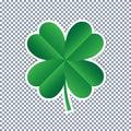 Vector four leaf clover on transparent background