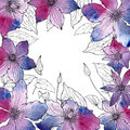 Vector frame with beautiful clematis flowers