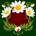 Vector frame with daisies in the shape of floral beast face Royalty Free Stock Photo
