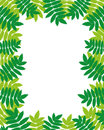 Vector frame leafs for your text Stock Images