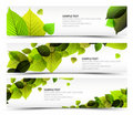 Vector Fresh spring horizontal banners Stock Photography