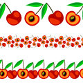 Vector fruit seamless line. Set of elements for design, borders with cherries, isolated on white background Royalty Free Stock Photo