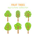 Vector fruit trees illustration. Apple tree. Plum and pear cartoon set. Flat argiculture collection.