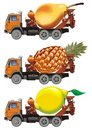 Vector fruit-truck set Royalty Free Stock Images