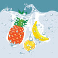 Vector of the fruit under water Stock Image