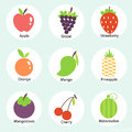 Vector fruits icon set on blue background.