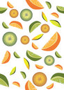 Vector-fruits-on-isolated-background Royalty Free Stock Photos