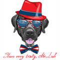 Vector funny cartoon black dog breed Labrador Retr