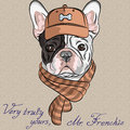 Vector funny cartoon hipster dog french bulldog b breed in a brown cap and scarf Stock Photos