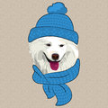 Vector funny cartoon hipster samoyed dog smile in a blue knitted hat and scarf Stock Photography