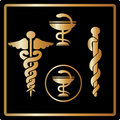 Vector Gold medical card icons symbol emblem Royalty Free Stock Images