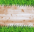 Vector grass with wood ecological concept of illustration design template Royalty Free Stock Photography