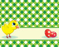Vector green checkered background chicken easter eggs Stock Photography