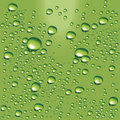 Vector green water bubbles Royalty Free Stock Images