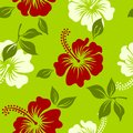 Vector green,white and red tropical summer hawaiian seamless pattern with tropical hibiscus flowers Royalty Free Stock Photo