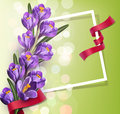 Vector greeting card with blue crocuses , frame, red ribbon
