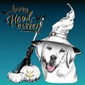 Vector greeting card for Halloween. Dog wearing the witch hat. Broom and pumpkin lanterns. Hand drawn.