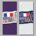 Vector greeting cards for Bastille Day Royalty Free Stock Photo