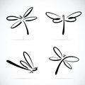 Vector group of dragonfly sketch. Royalty Free Stock Photo