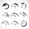 Vector group of horse head design