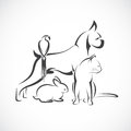 Vector group of pets - Dog, cat, bird, rabbit, isolated Royalty Free Stock Photo