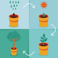 Vector growth concept infographic in flat style Royalty Free Stock Photography