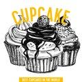 Vector hand drawn cupcake Illustration.