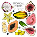 Vector hand drawn exotic fruits. Engraved smoothie bowl ingredients. Colored icon set. Tropical sweet food. Carambola