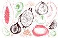 Vector hand drawn exotic fruits. Engraved smoothie bowl ingredients. Tropical sweet food. Carambola, guava, papaya, fig