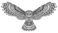 Vector hand drawn flying owl. Black and white zentangle art Royalty Free Stock Photo