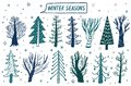 Vector hand drawn forest tree winter set. Elements for the design of pine, spruce, tree. Doodle style.