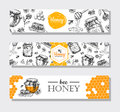 Vector hand drawn honey banners detailed honey engraved illust illustrations graphic honeycomb bee pod flowers great banner Stock Image