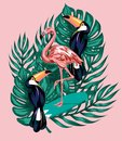 Vector hand drawn illustration of flamingo on surfboard, toucans, palm leaves.