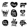 Vector hand drawn milk logotypess. Signs set for dairy produce. Tags collection for products packaging, advertising etc.