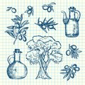 Vector hand drawn olive branches, bottles and tree on cell sheet Royalty Free Stock Photo