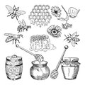Vector hand drawn pictures of honey products