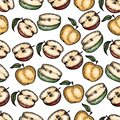 Seamless pattern of colorful of apples in the engraving style isolated on white.