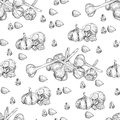 Vector hand drawn seamless pattern of garlic. Stylized black and white sketch of a bundle of garlic groves tied with