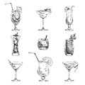 Vector hand drawn set of cocktails and alcohol